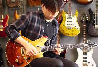 ts-guitars